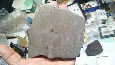 Meteorit Gibeon, Eisen IVA, Fund 1836,Namibia, 969gr.,daumen dicke Platte- super