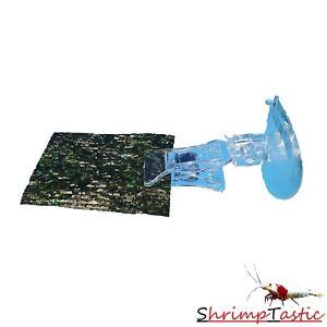Futter-Klammer mit Saugnapf für Blätter / Garnelen Aquarium Futter