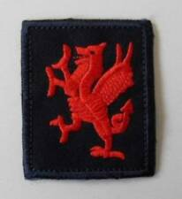 BRITISH ARMY. THE ROYAL WELSH FUSILIERS TRF. BADGE.