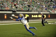 Cfl Weston Dressler Blue Bombers End Zone Game Action 8 X 10 Color Photo Picture