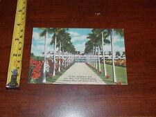 Vintage Postcard View Gulfstream Park Florida