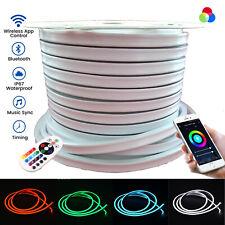 RGB LED Neon Flex AC 220V Flat 12x20mm Wireless Bluetooth App IP67 RGB LED Flex