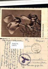 518172,WK 2 Feldpost Dienststelle 16113 n. Hermannstein Wetzlar