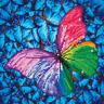 Diamond Dotz Complete Diamond Facet Art Kit Flutter By Pink