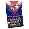 NRL Wall Flag Cape - Sydney Roosters - Premiership 2013 Steel Eyelet For Hanging