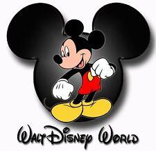 DISNEY MICKEY MOUSE DISNEY VACTION WALT DISNEY WORLD /T-SHIRT IRON ON TRANSFER
