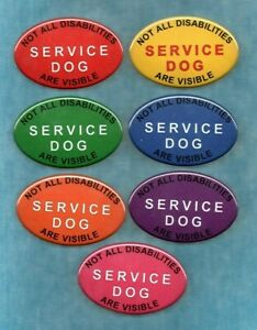 SERVICE DOG NOT ALL DISABILITIES ARE - color - service dog vest patch button