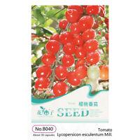 Cherry Tomato Seeds - 30/60/300 Seeds - Home Garden Organic Fruit & Vegetable