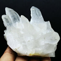 Natural Clear Quartz Cluster Crystal Wand Point Healing Mineral Specimen 320g