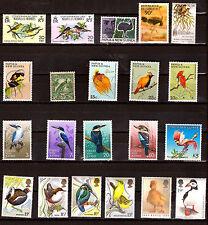 PAPUA NEW GUINEA et ROYAUME UNI : oiseaux exotiques  F199