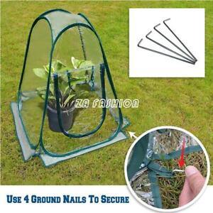Mini Pop-up Garden Flowers Cover Tent PVC Greenhouse Propagator Plant Tent