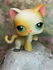 Littlest Pet Shop Short Hair Kitty Cat # 73 Green Eyes Paw Up Yellow White Lps
