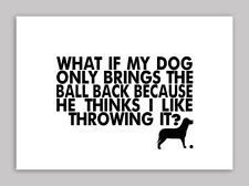 What If My Dog Only Brings Back The Ball, Quote, Poster, Wall Art, All Sizes
