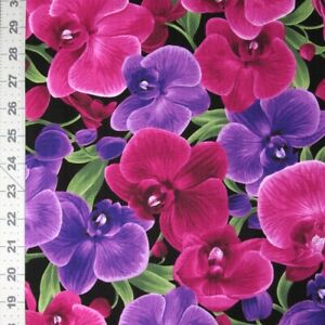 Floral Fabric - Large Orchid Pink Purple on Black - Timeless Treasures YARD