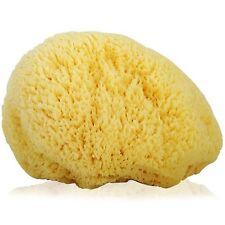 Natural Greek FINA SILK  Large Sea Sponge Premium Quality BABY BATH 4''- 4.5''