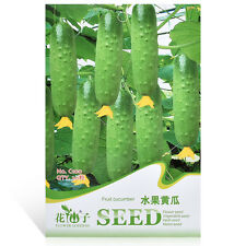 1 Pack Seeds Cucumber Titus F1 Organic Russian Pickling Vegetable Seed