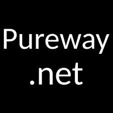 Pureway.net - premium domain name - No reserve!