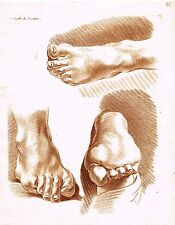 """Sepia Colored """"STUDY OF FEET & TOES"""" - Copper Engraving - c1800"""