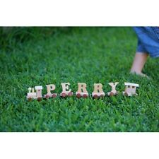 NEW Personalised Wooden Alphabet Name Train