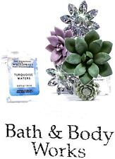 Bath and Body Works Succulent Frame Wallflower Plug & Turquoise Waters Bulb