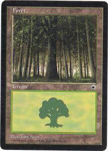 Magie- Wald