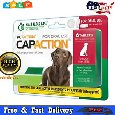 New listing Oral Flea Tick for Dogs Medication Medicine Pills Flea Treatment Large Dog 6ct.