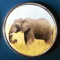 Somaliland 10 Shillings 2018 UNC Elephant unusual coin