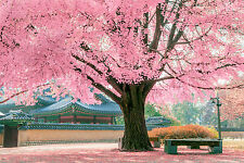 BEAUTIFUL JAPANESE GARDEN CANVAS PICTURE #29 STUNNING LANDSCAPE NATURE A1 CANVAS
