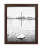 Golden State Art, 8x10 Walnut Color Wood Swan Photo Frame with REAL GLASS