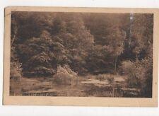 Foret de Fontainebleau Marlotte 1931 France Vintage Postcard 134a