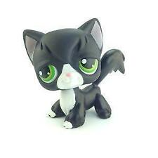 Littlest Pet Shop Short Hair Cat
