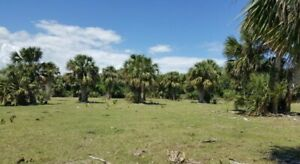 3.39 Acres on Florida's Space Coast! **Directly Off US1** Near Cape Canaveral