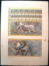 Stampa antica LEONE GRIFONE SUSA  SHUSH Iran 1920 Old antique print