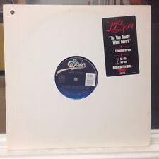 "NM 12""~JANICE DEMPSEY~Do You Really Want Love~[Extended~Go Mix~Go Dub]~[1990]~"
