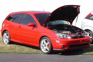 2000-04 Ford Focus Hood QuickLIFT PLUS Black Gas Strut Shock SVT Bonnet Lifters