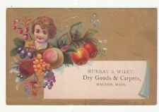 Murray & Wiley Dry Goods Carpets Walden MA Peaches Apples Berries Card c1880s