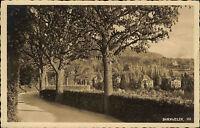 Badenweiler Schwarzwald alte Postkarte ~1930 Teilansicht Blick vom Spazierweg
