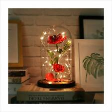 Autoday Beauty and The Beast Preserved Fresh Rose Flower Light Fallen Petals in