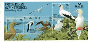 BRITISH INDIAN OCEAN TERRITORY - BIRDS, YV # BL 16, MNH, VF