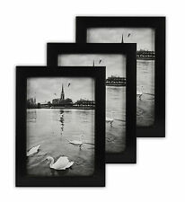 Pack of 3, 5x7 Ebony Black Wood Swan Photo Frame with REAL GLASS