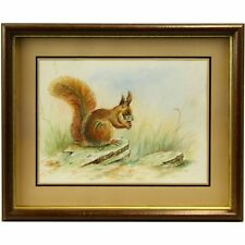 Framed Original Mid Century Realist Red Squirrel Portrait Watercolour Painting