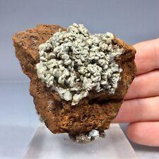 SS Rocks -