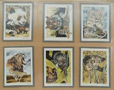 VICTORIA GALLERIES Trade Cards (Complete 20/20) Endangered Wild Animals