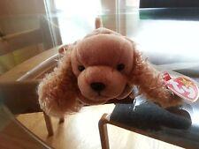 'Spunky' the Spaniel - Ty Beanie Baby - MINT - RETIRED
