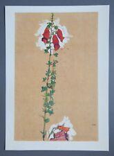 Egon Schiele Lichtdruck Collotype 36x50 Roter Fingerhut 1910 Red Foxglove Signed
