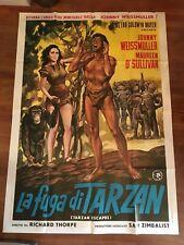 manifesto,4F T,  La fuga di Tarzan Escapes Johnny Weissmuller Maureen O'Sullivan