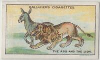The Ass and the Lion Aesop's Fable Moral Story 1920s  Ad Trade Card
