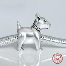 Bull Terrier perro plata de ley
