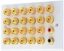 White 11.2 Speaker Wall Plate Gold 22 Binding Posts + 2RCA's