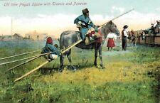 Piegan Blackfeet Indians,Squaw,Native American,(First Nation),U.S-Canada,1907